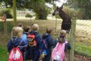feature image_marwell