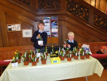 Marie Curie Pots of Care (1)